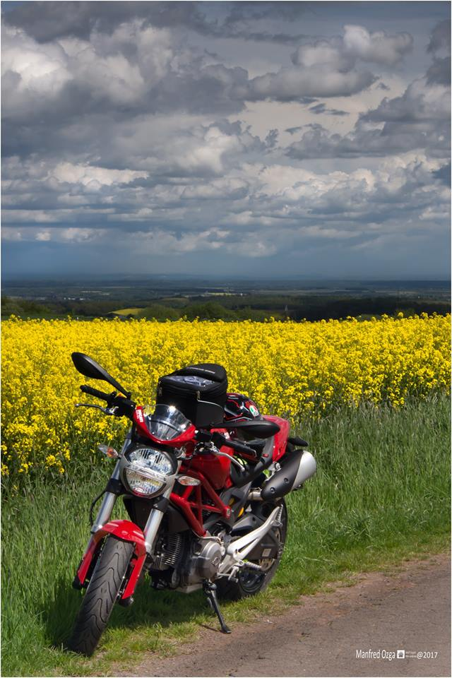 Ducati Tankrucksack.jpg