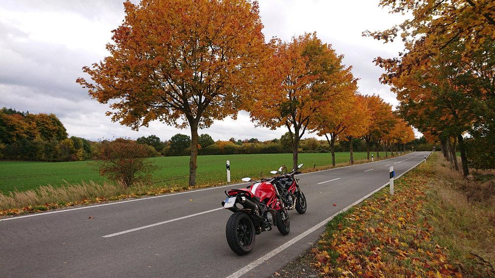 Herbst 2.jpg