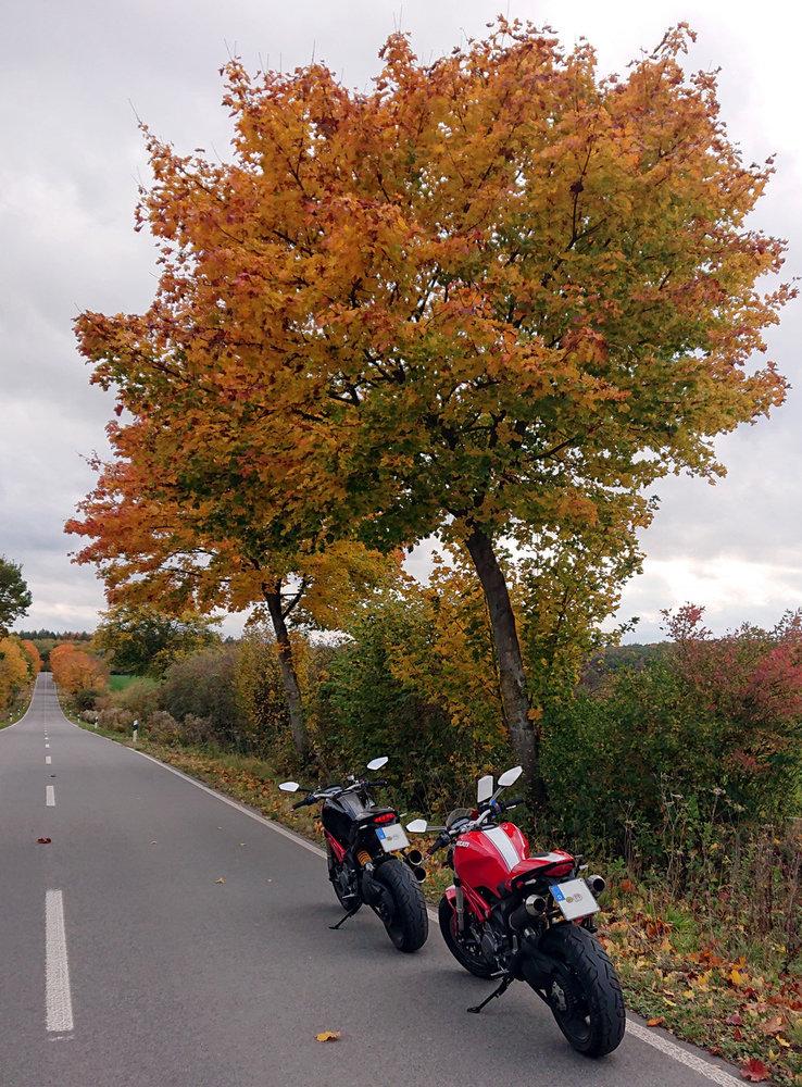 Herbst 1.jpg