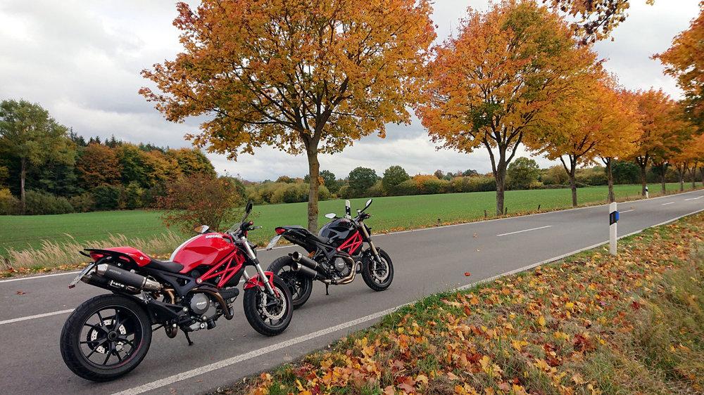 Herbst 3.jpg